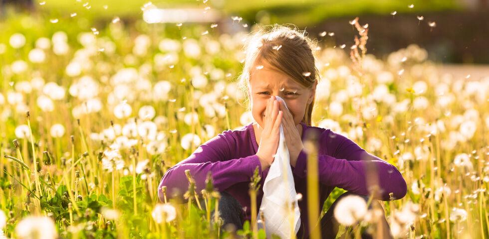 Pollenallergie - Lassen Sie Ihren Arzt austesten, auf welchen Stoff Sie allergisch reagieren und meiden Sie den Auslöser Ihrer Beschwerden anschließend so gut es geht. - © Shutterstock