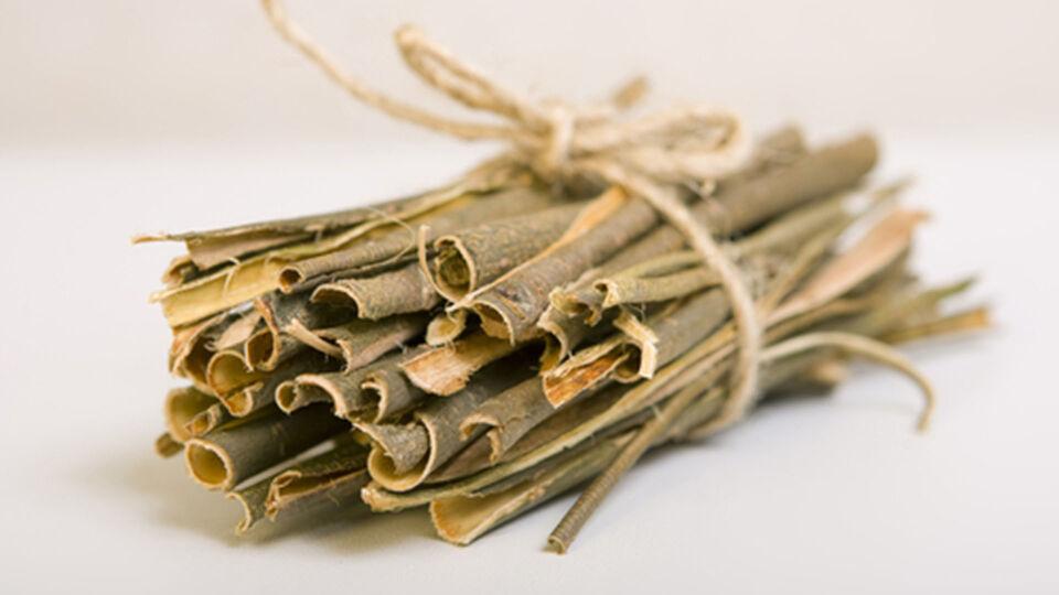 Weidenrinde_getrocknet_Heilpflanze - Getrocknete Weidenrinde kann Rückenschmerzen lindern. - © Shutterstock