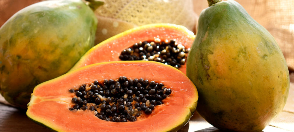 Papaya Ernährung - Das Enzym Papain ist in Papayas enthalten. - © Shutterstock