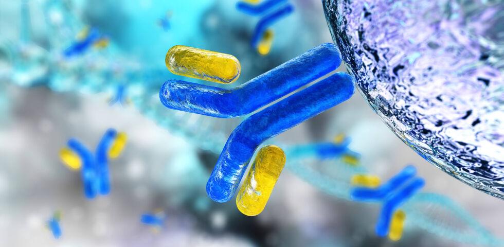 Immunglobuline Antikörper Laborwerte - © Shutterstock