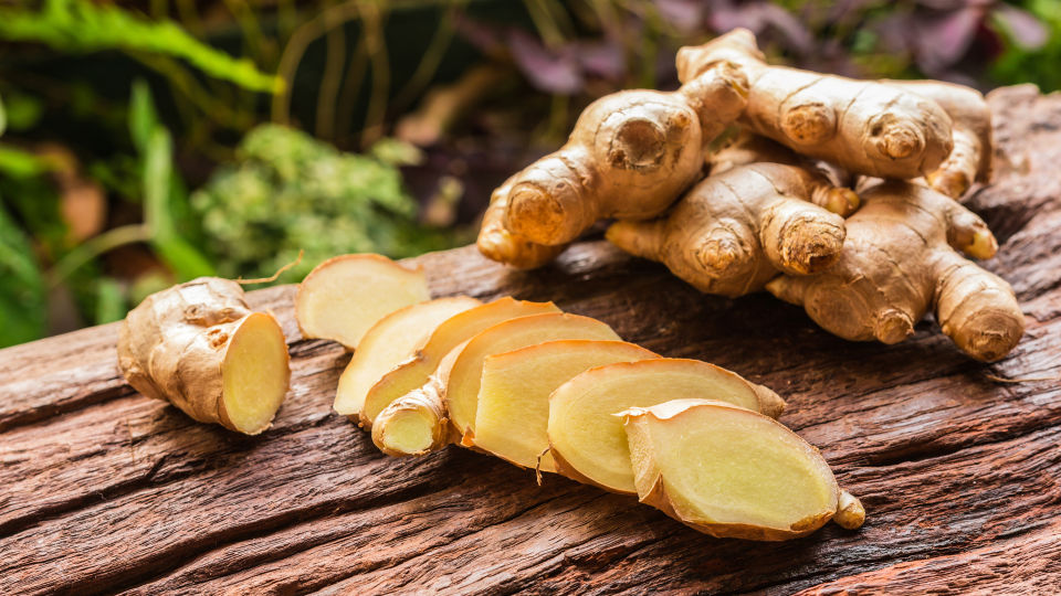 Ingwer Heilpflanzen - Ingwer hilft bei Kreislaufbeschwerden. - © Shutterstock