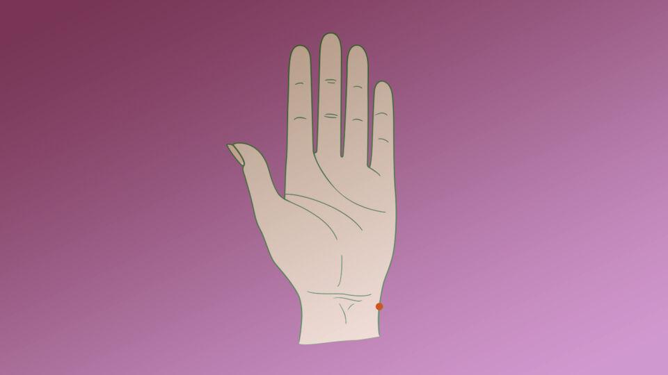 Hand Akupressur Punkt online - © Shutterstock/red