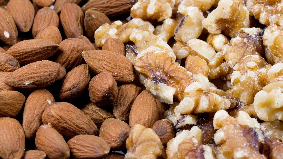 Mandeln und Walnüsse Ernährung - Perfektes Brainfood: Mandeln und Walnüsse. - © Shutterstock