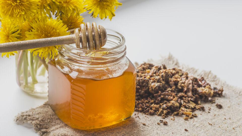 Bienen Propolis - © Shutterstock