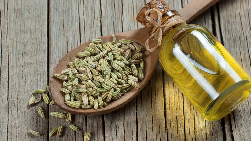 Fenchel Heilpflanze - Fenchel ist sehr vielfältig einsetzbar und empfiehlt sich sowohl bei Völlegefühl, krampfartigen Bauchschmerzen, Blähungen als auch bei Husten. - © Shutterstock