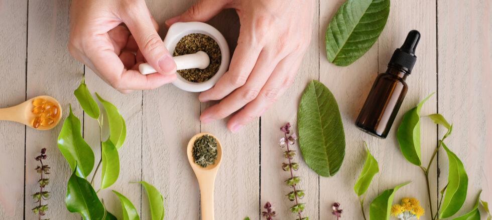 Heilpflanzen Phytotherapie - © Shutterstock