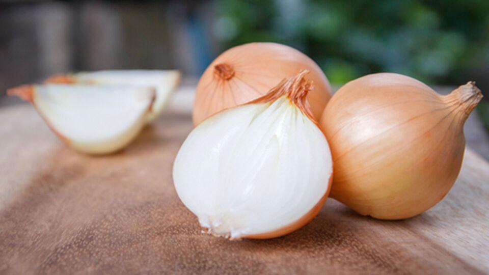 Zwiebel - Zwiebeln können Erkältungssymptome wie Schnupfen oder Ohrenschmerzen lindern. Man kann sich Zwiebelsäckchen im Schlafzimmer aufhängen oder sie auf die betroffenen Ohren legen. - © Shutterstock