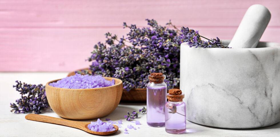 Lavendel Heilpflanze - © Shutterstock