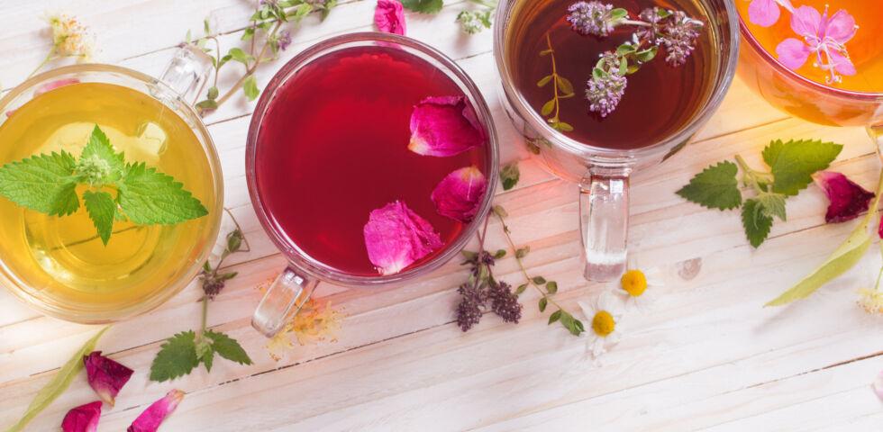 Naturheilkunde Heilpflanzen Tee allgemein - © Shutterstock