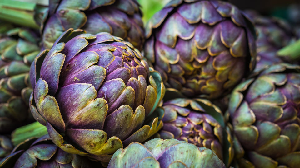 Artischocke_Ernährung - Frische Artischocken sind leuchtend grün oder violett. Achten Sie beim Kauf darauf, dass die Blätter eng anliegen und keine braunen Flecken haben. - © Shutterstock