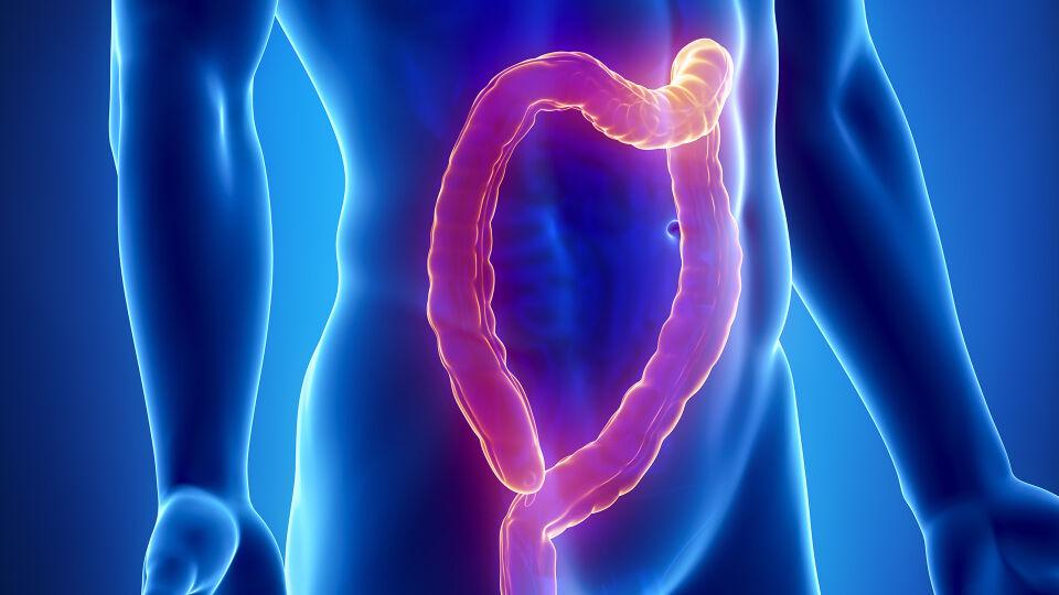 CED Darm - Bei anhaltenden Beschwerden ist eine rasche Abklärung zu empfehlen - je eher im Falle einer CED eine Therapie eingeleitet wird, desto besser. - © Shutterstock