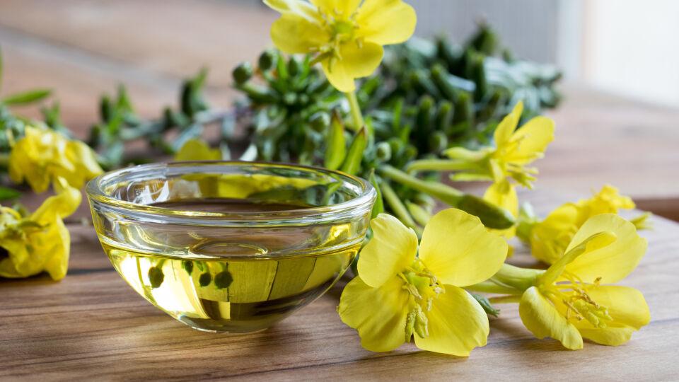 Nachtkerze Heilpflanze - Nachtkerzen-Öl kann auch gegen Akne helfen.
