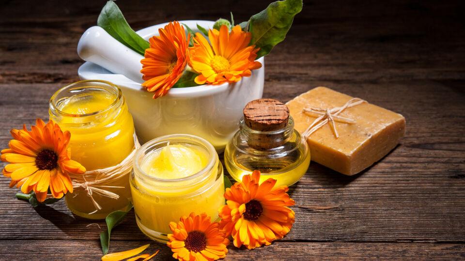 Ringelblume Heilpflanze - Ringelblumen-Salbe wird häufig bei rauer oder wunder Haut sowie zur Lippenpflege verwendet.