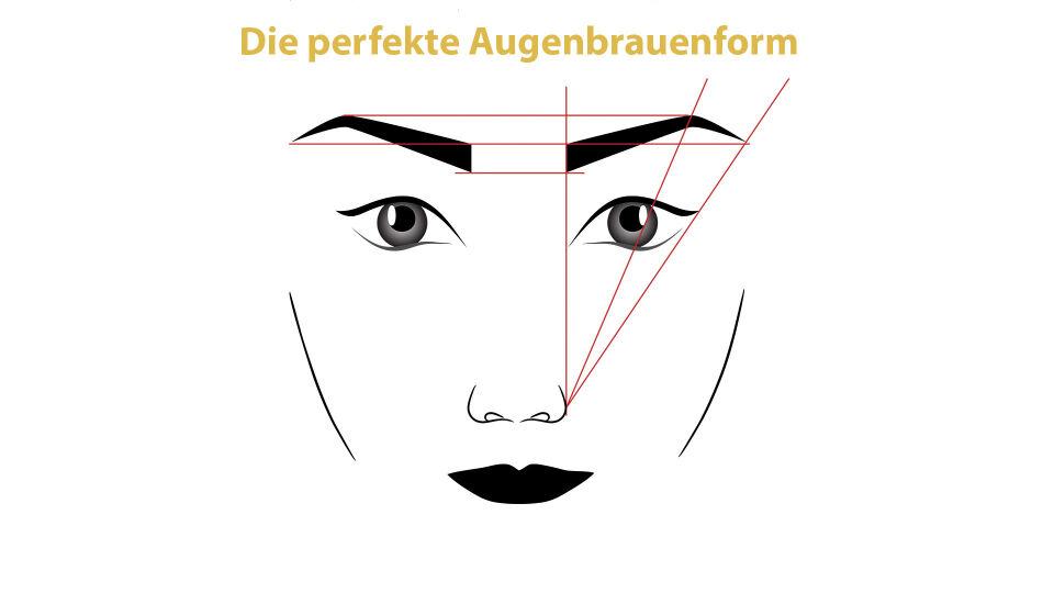 Augenbrauen Illustration Kosmetik - © Shutterstock