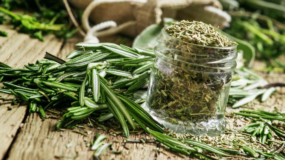 Heilpflanze Rosmarin - In der Naturheilkunde werden die Blätter des Rosmarins verwendet.