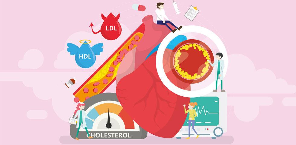 Cholesterin - © Shutterstock