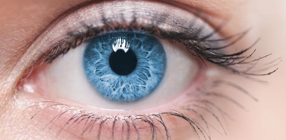 Auge - Leider werden Augenerkrankungen oft erst spät erkannt. Besonders Diabetiker sollten regelmäßig zur Augenkontrolle gehen. - © Shutterstock