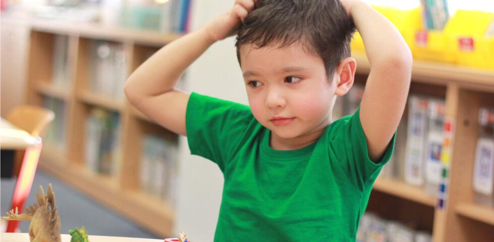 Läuse - Vor allem zum Schulbeginn im Herbst haben die Kopfläuse Hochsaison. - © Shutterstock