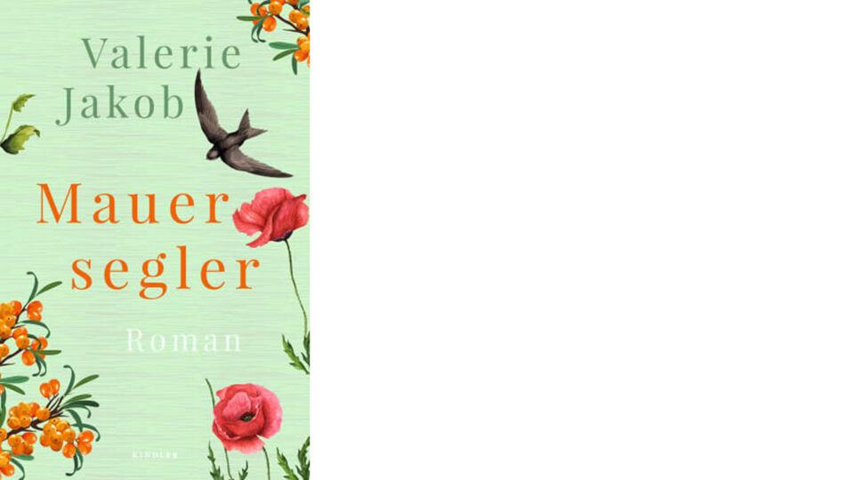 Buch Cover_Mauersegler_c_Kindler Verlag - Roman - © Kindler Verlag