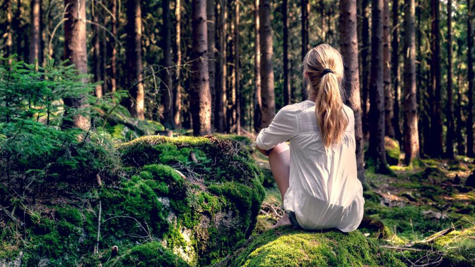 Eine Frau sitzt im Wald_shutterstock_1806334207_heller - Die Duftstoffe, die die Bäume ausströmen, haben einen positiven Einfluss auf unsere Gesundheit.