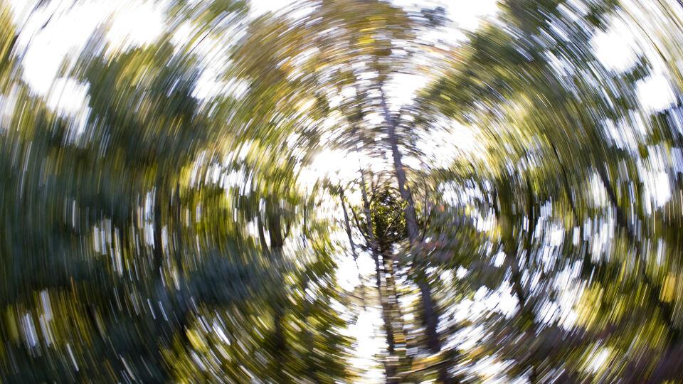 Schwindel Vertigo - Schwindel kann viele Ursachen haben – häufig ist hier medizinische Detektivarbeit gefragt. - © Shutterstock