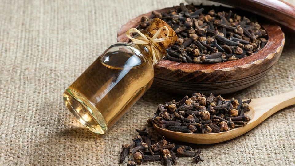 Nelken und Nelkenöl_Heilpflanzen_shutterstock_1398786755 - Am besten verwendet man Nelkenöl aus der Apotheke, das auf die schmerzende Stelle aufgetragen wird.
