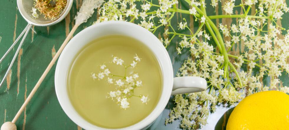 Heilpflanzen_Tee mit Holunderblüten_shutterstock_522288073 - Holunderblüten wirken auch etwas schleimlösend, reizmildernd und steigern die Immunabwehr.