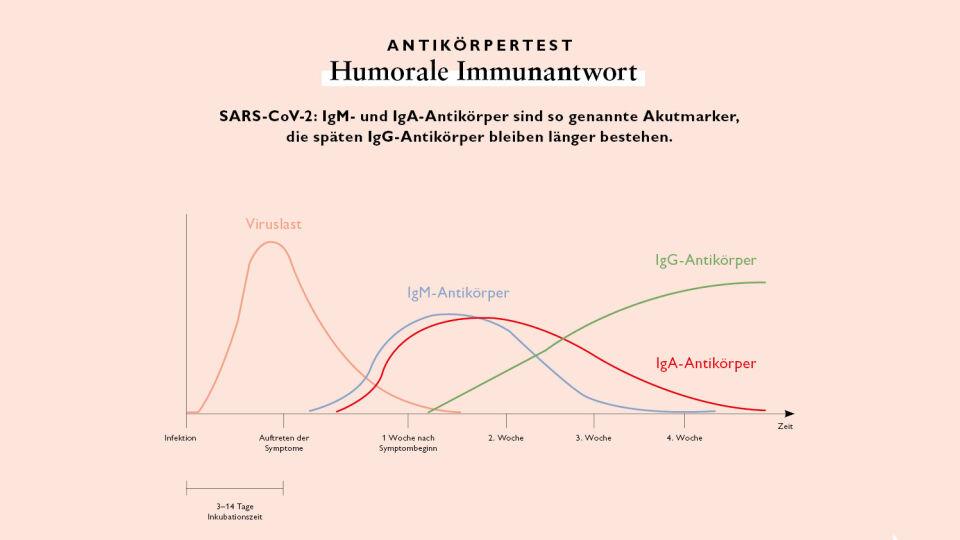 Antikörpertest Diagramm_online_apoverlag - © apoverlag