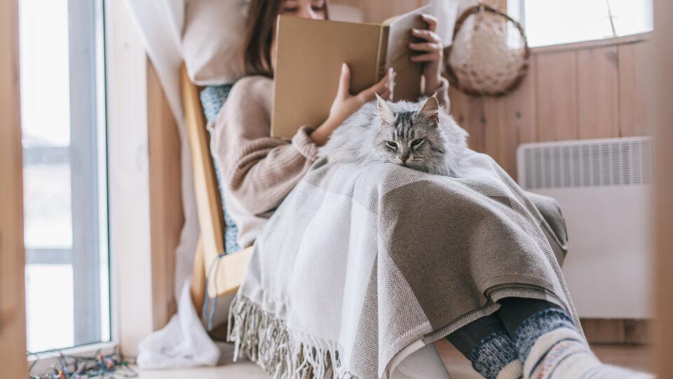 Lesendes Mädchen mit Katze_Herbst_Wärme_shutterstock_1264682524 - Wenn wir frieren, arbeitet unsere Körperabwehr langsamer.