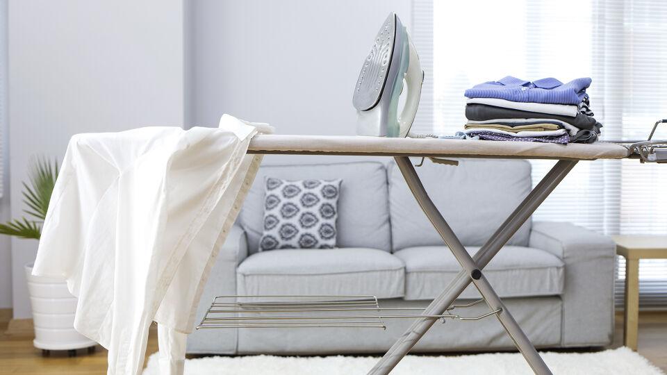 Bügelbrett - Vorsicht beim Bügeln: Nicht nur das Bügeleisen ist für Hund und Katze gefährlich, auch das Bügelbrett – zum Beispiel, wenn es versehentlich umkippt. - © Shutterstock