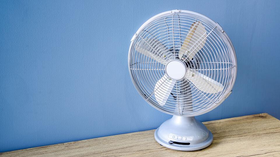 Ventilator - Zugluft kann Tiere krank machen. - © Shutterstock