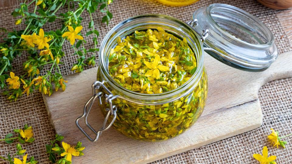 Johanniskraut Heilpflanzen - Johanniskraut kann die Wirkung der Anti-Baby-Pille herabsetzen. - © Shutterstock
