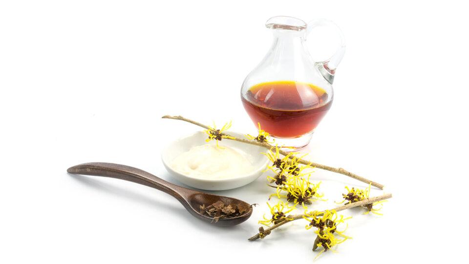 Pflanze_Zaubernuss_Hamamelis - Zaubernuss wird bei Hämorrhoiden, leichten Hautverletzungen und bei Entzündungen der Haut und der Schleimhäute verwendet. - © Shutterstock