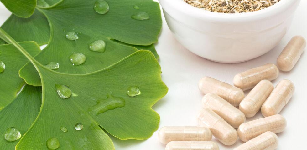 Gingko biloba_Heilpflanzen - © Shutterstock