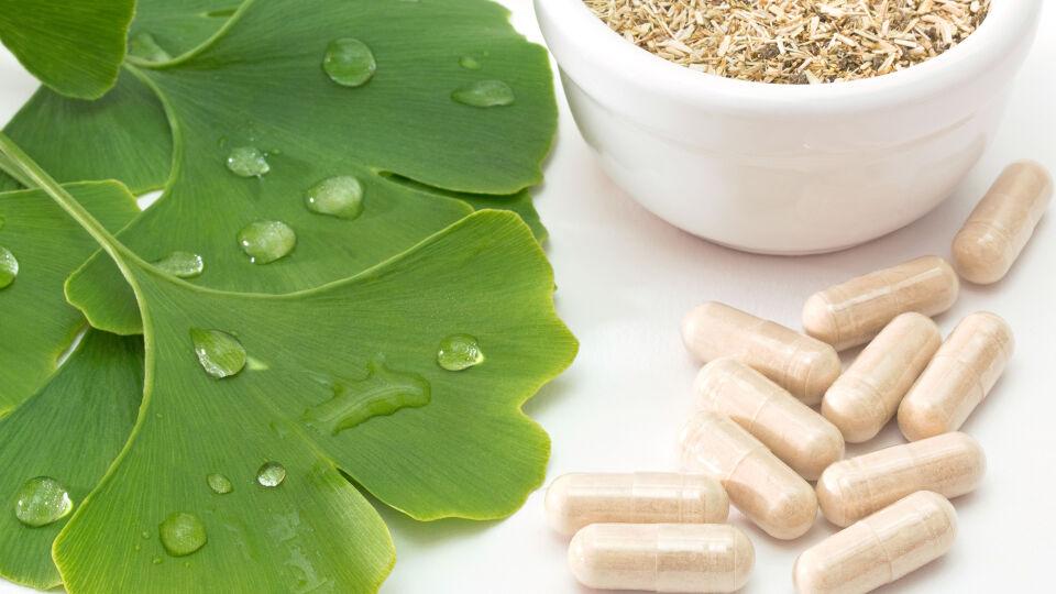 Gingko biloba_Heilpflanzen - Dem Ginkgoextrakt werden schützende Wirkungen auf die Nervenzellen zugesprochen. - © Shutterstock