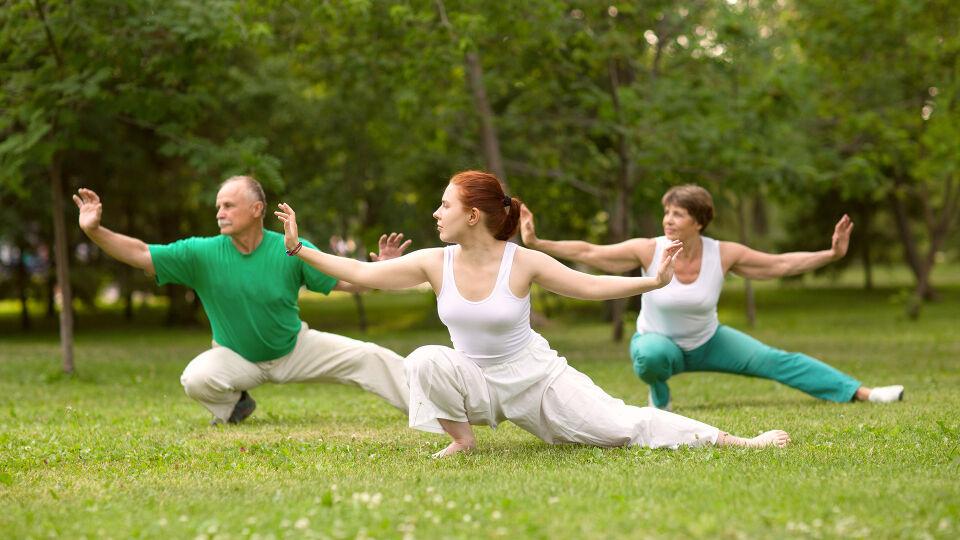 Gruppe_Training_Wiese_Qigong_Tai-Chi_Yoga_Pilates - Österreichweit werden zahlreiche Kurzse zu progressiver Muskelentspannung, Qigong, Yoga und zu Tai-Chi angeboten. - © Shutterstock