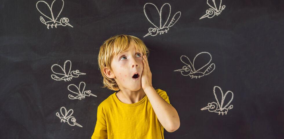 Gelsen Mücken 2 online - © Shutterstock